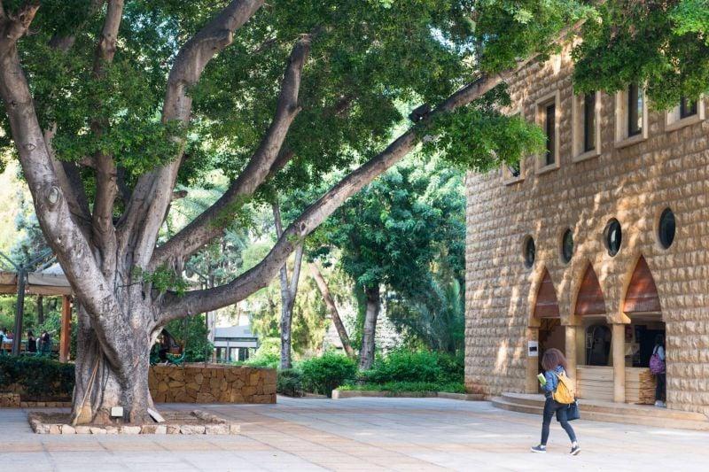 Au Liban, les universités privées en mode survie