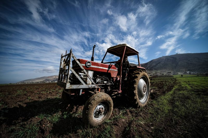 Lebanon's domestic agricultural production is faltering, even though import subsidies may be close to an end