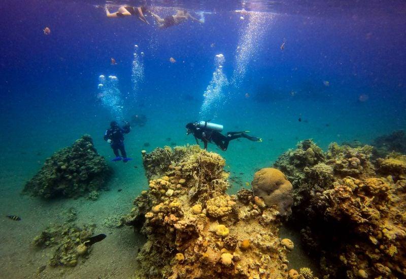 En Israël, les écosystèmes marins menacés par un accord pétrolier avec les Émirats
