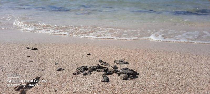 Marée noire au Sud: les plages sous surveillance