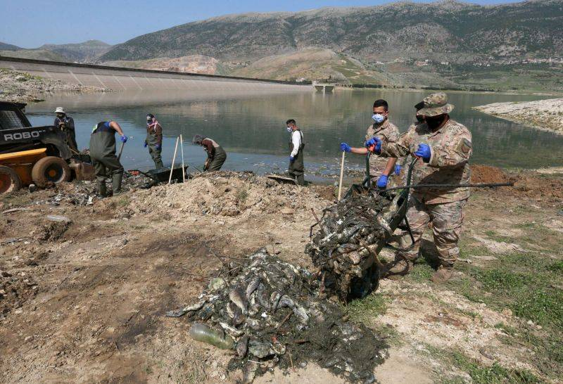 Hecatomb of carp in Lake Qaraoun: Multiple scenarios, but no clear explanation