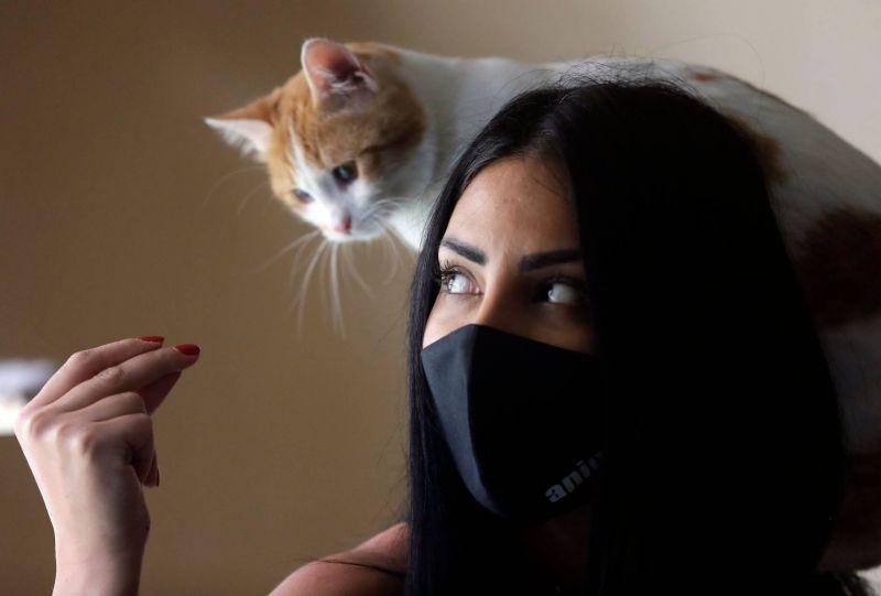 Au Liban, la crise oblige aussi à se séparer de son animal domestique