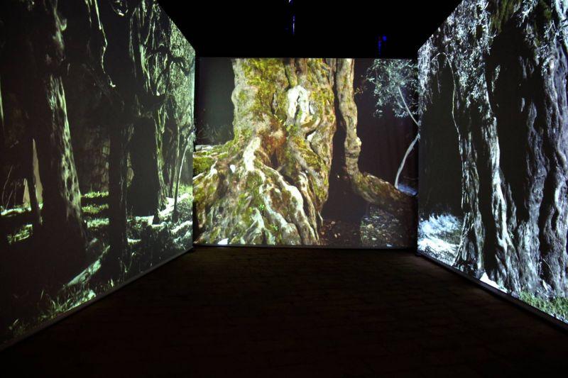 La scénographie du Pavillon libanais dévoilée au grand public