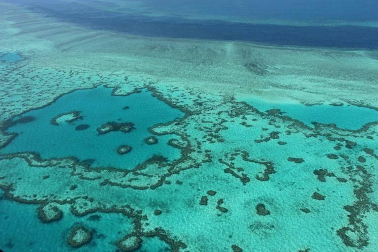 La Grande Barrière de corail devrait être classée