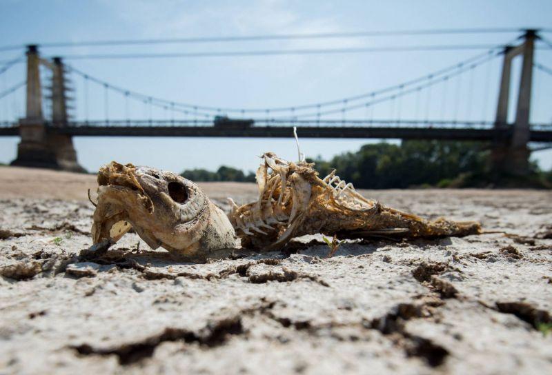 L'humanité à l'aube de retombées climatiques cataclysmiques