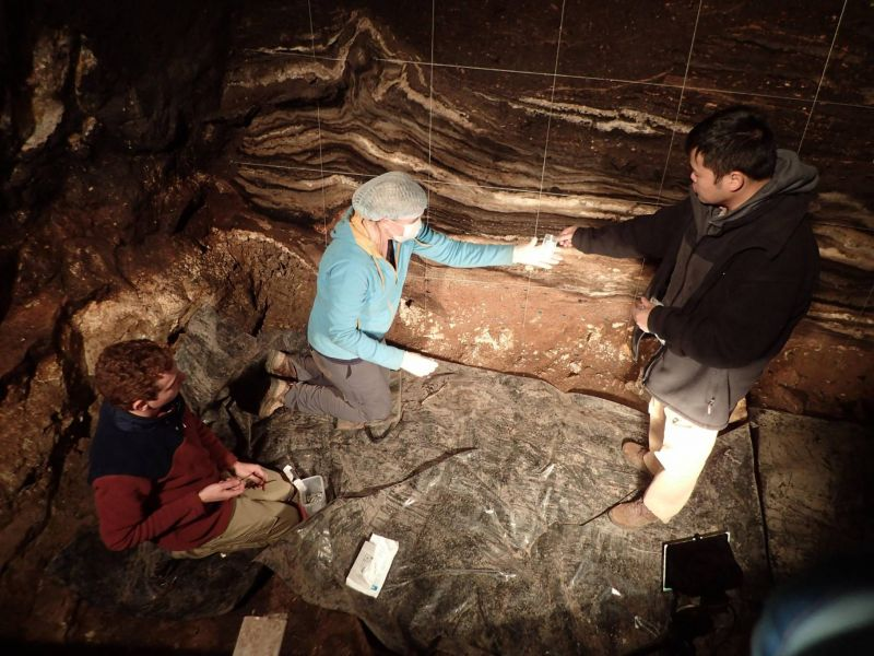 Denisova, Néandertal, Sapiens: trois espèces, trois ADN, une seule grotte