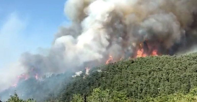 Wildfires in the north, Mikati to Baabda, immunity lifted in port case: Everything you need to know today
