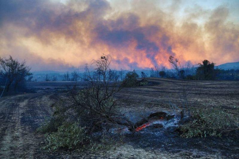 Trois morts dans des feux de forêt dans le Sud