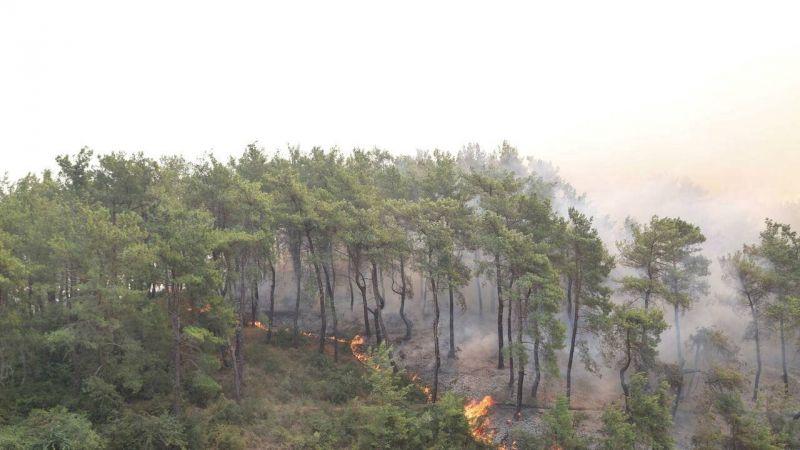 Quatrième jour de lutte contre les feux de forêt