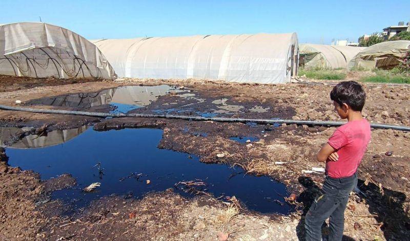 Des terres agricoles inondées de pétrole suite à une fuite dans un oléoduc passant par la Syrie